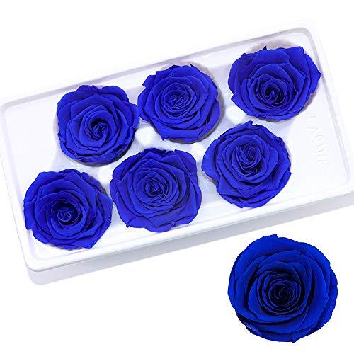 Gobesty Ewige Rosen Box, 6 Stück Rosen Die Ewig Halten Echte Rosen in Box haltbar für Valentinstag/Muttertag/Geburtstag/Hochzeitstag/Weihnachten/Jahrestag(Rechteckige Schwarze Box, Königsblau)