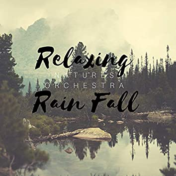 Relaxing Rain Fall