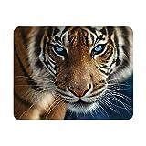 Deluxebase 3D LiveLife Imán - Ojos Azules Imán de Nevera lenticular 3D con diseño de Tigre. Adorno magnético para niños y Adultos Estampado con ilustración del reconocido Artista Collin Bogle