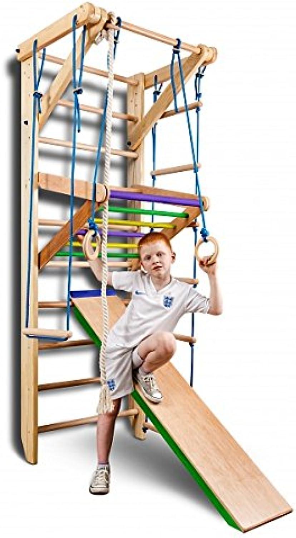 diseños exclusivos KindSport Escalera Sueca Barras de Parojo Sport-3-220-Color, Gimnasia de los los los Niños en casa, Complejo Deportivo de Gimnasia  tienda en linea