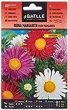 Semillas de Flores - Reina Margarita Flor Margarita - Batlle