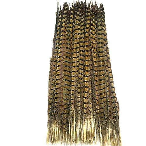 12PCS Fasanenfedern - Schwanz - 12 bis 13 Zoll lang groß - braune extra große - Modehäuser Hüte Regalia Thanksgiving Centerpiece Herbsttisch Herbst
