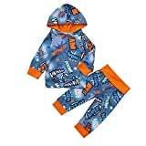 MRULIC Kleinkind Baby Jungen Hoodie Pullover Tops + Hosen Outfits Set Anzüge 60-100CM(Blau,60-70CM)