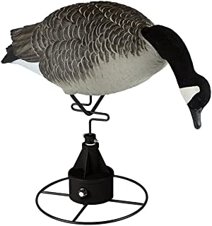 Lucky Duck Decoy Deceiver