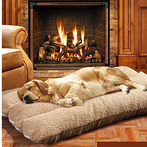 Catalpa - Cama para Perros, tamaño XXL, Lavable, 125 x 80 x 12 cm