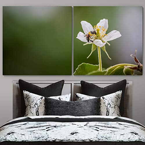 """bestdeal depot Bee on Flowers Decorative Elements Art For Home 2 Panel Canvas Wall Art Prints for Living Room,Bedroom Ready to Hang - 24""""x24"""" x 2 Panels"""