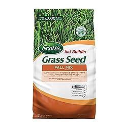 small Scotts Turf Builder Fallgrass Seed Mix, £ 15.