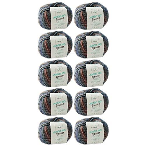 Wol breien * Merino wol Balance (Fb 5008) * 10 bollen merinowol bruin om te breien - dikke wol + gratis MyOma Label - 100 g/150 m - naalddikte 6-7 mm - MyOma wol - zachte wol - kleur wol