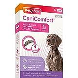 Beaphar – Canicomfort – Collar calmante de feromonas para Perros – Reduce el estrés y los Problemas de Comportamiento sin dependencia ni somnolencia – Listo para Usar – 1 Collar de 65 cm