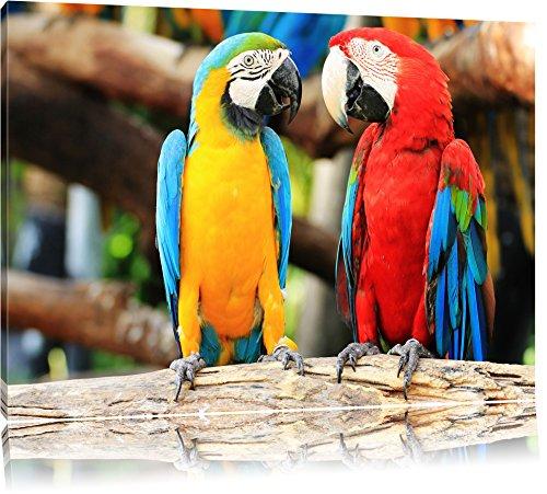 Zei Papageien auf einem Ast Format: 120x80 auf Leinwand, XXL riesige Bilder fertig gerahmt mit Keilrahmen, Kunstdruck auf Wandbild mit Rahmen, günstiger als Gemälde oder...