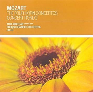 Mozart: The 4 Horn Concertos