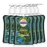 Sagrotan Handseife Tropical Edition – Antibakterielle Flüssigseife – 6 x 250 ml Seifenspender...