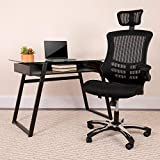 Flash Furniture High Back Office Chair | High Back...