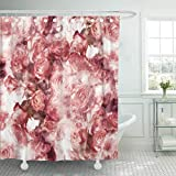 LongTrade Cortina de baño Shower Curtain Shower Curtain Beautiful Roses and Watercolor Digital Fabrics Souvenirs Packaging Abstract Waterproof Polyester Fabric Set with Hooks 60' W x 72' L