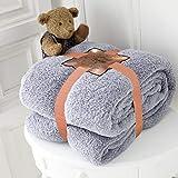 RayyanLinen Teddy-Fleece-Überwurf, Decke, warm, weich, luxuriös, kuschelig, für Sofa, Tagesdecke, Reise, Überwurf (Grau/Silber), King/Large – 200 x 240 cm