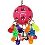 Bonka Bird Toys Pet Toys