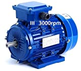 MOTOR TRIFASICO 2,2 KW / 3 CV B3 3000 RPM