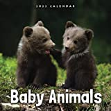 """Baby Animals 2022 Calendar: From January 2022 to December 2022 - Square Mini Calendar 8.5x8.5"""" - Small Gorgeous Non-Glossy Paper"""