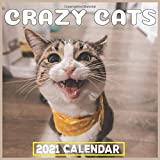 crazy cats 2021: Wall Calendar, Awesome monthly Calendar Gift for Cat Lovers