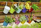 DipamkarHängetöpfe Balkon 10St Blumentopf hängend Balkontopf Pflanztopf zum hängen Metall