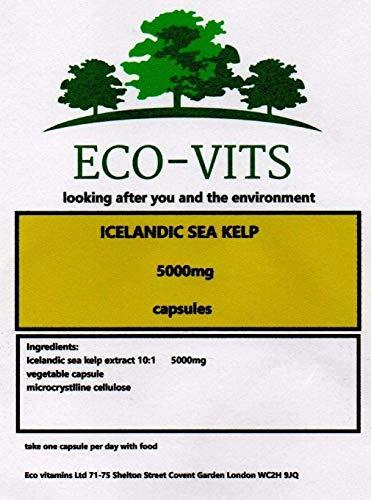 Icelandic SEA KELP (5000mg) 30 CAPS