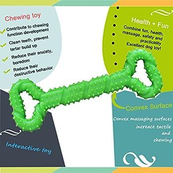 Chien Jouets à mâcher Résistant en Caoutchouc 13 Inch Os jouet en forme de chien chiots avec Convex Design jouet chien interactif solide pour les Chewers Agressifs petits et grands chiens