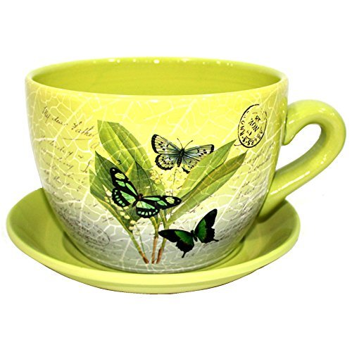 Gr8 Garden Decorative Novelty Terracotta Tea Cup and Saucer Shaped Garden Patio Flower Planter Plant Pot Tub (Large Green Butterfly Leaf)