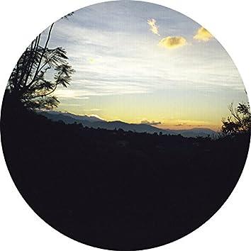 Oaxaca Dawn / Bamboo