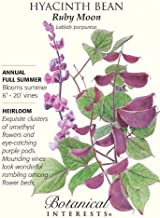 Ruby Moon Hyacinth Bean Seeds - 3 Grams by AchmadAnam