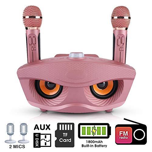 Karaoke-apparaatset, Karaoke-systeem Draadloze Bluetooth-luidspreker, KTV-luidspreker Karaokespeler met AUX-ingang/twee microfoons/TF-kaart/U-schijf voor thuis