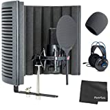 sE Electronics X1-S-Studio-Bundle Microphone with Reflexion Filter X, Shockmount and Cable Pack + Studio Headphones + Windscreen + Cleaning Cloth