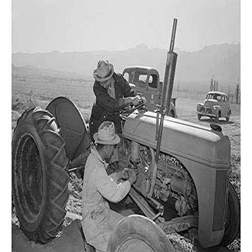 Ansel Easton Adams (1902 1984) war ein amerikanischer Fotografen, bekannt für seinen schwarz-weißen pH-Wert