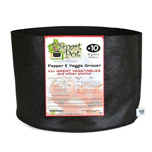 High Caliper Growing Smart Pot de Poivre et légumes avec boîte DSP Noir 10 gallons