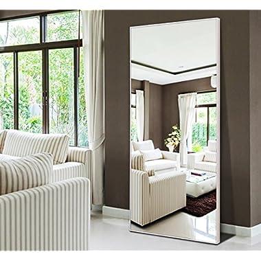 Hans&Alice Rectangle Bedroom Floor Mirror,Free Standing Dressing Mirror, 65 x22