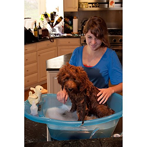 Pet Gear Pup-Tub, for Pets up to 20-pounds