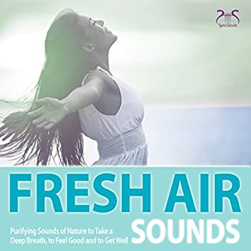 Fresh Air Sounds: Purifying Sounds of Nature to Take a Deep Breath, to Feel Good and to Get Well