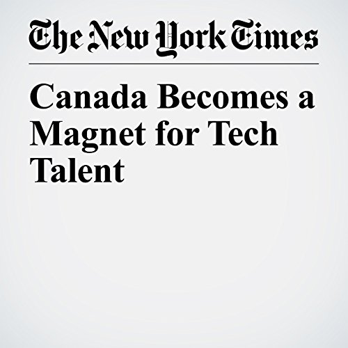 Canada Becomes a Magnet for Tech Talent copertina