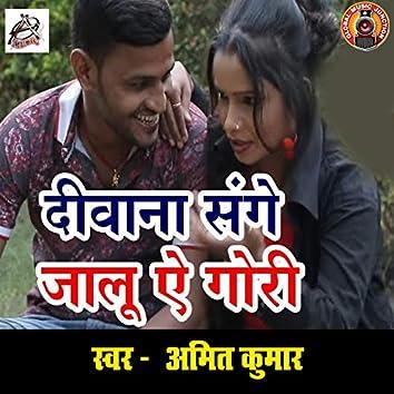Deewana Sange Jaalu Ae Gauri - Single