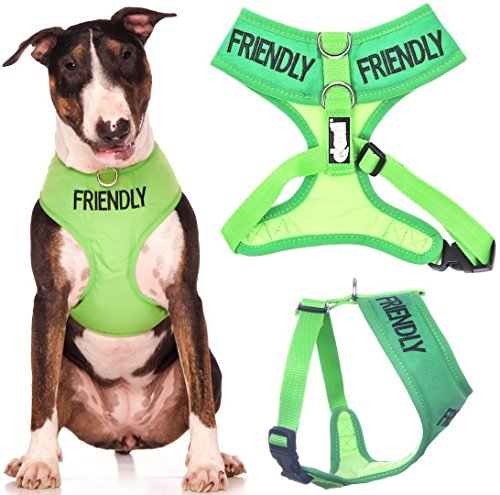 FRIENDLY (Known as Friendly to all) Green Color Coded Non-Pull Front and Back D Ring Padded and Waterproof Vest Dog Harness PREVENTS Accidents By Warning Others Of Your Dog In Advance (L)