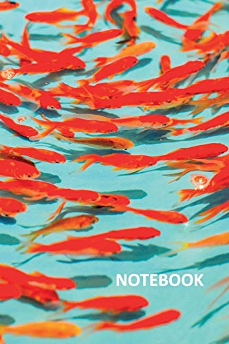 Notebook: Colorful schooling freshwater fish Stylish Composition Book Daily Journal Notepad Diary Student for researching goldfish starter kit