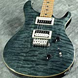 PRS/SE CUSTOM 24 ROASTED MAPLE GRAY BLACK NATURAL BACK