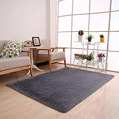 Area Rug?Leegor 80 x 120cm Fluffy Rugs Anti-Skid Shaggy Area Rug Dining Room Home Bedroom Carpet Floor Mat