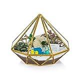 (三角型)ジュエリーボックス ジュエリー入れ 宝石箱 ジュエリー収納 ガラスボックス 指輪ケース ジュエリー収納 収納ボックス ガラス制 結婚式 好意 パーティー 装飾