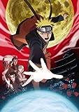 劇場版NARUTO-ナルト- ブラッド・プリズン【通常版】(10分間以上の未公開映像付き) [DVD] image
