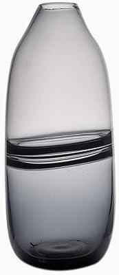 ZLR Florero de Cristal pequeño Creativo Creativo Personalidad Salón de Estar Florero de Cristal hidropónico (