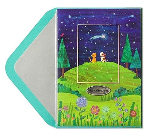 Papyrus Pet Sympathy Card Hilltop with Dog and Cat, 1 EA