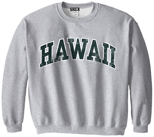Hawaii Rainbow Warriors 50/50 Blended 8-Ounce Vintage Arch Crewneck Sweatshirt, Small, Sport Grey