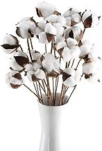 GTIDEA 20Pcs 23 inches Natural Dried Cotton Stem Farmhouse Artificial Flower Filler..