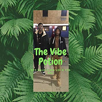 The Vibe Potion (feat. Big Lee & TTG Raj)