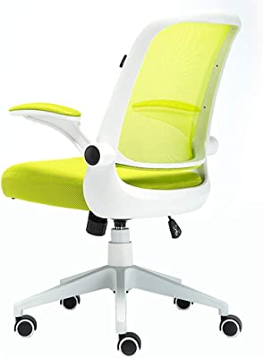 NSSDSD Computer Chair, Ergonomic Design, Fit Waist Curve, Seat is Enjoy, Home